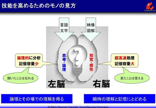 左脳と右脳のイメージ